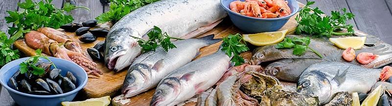 Fisch und Sea Food